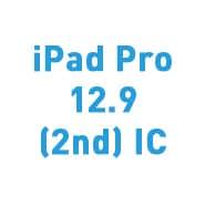 iPad Pro 12.9 (2nd) IC