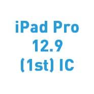 iPad Pro 12.9 (1st) IC